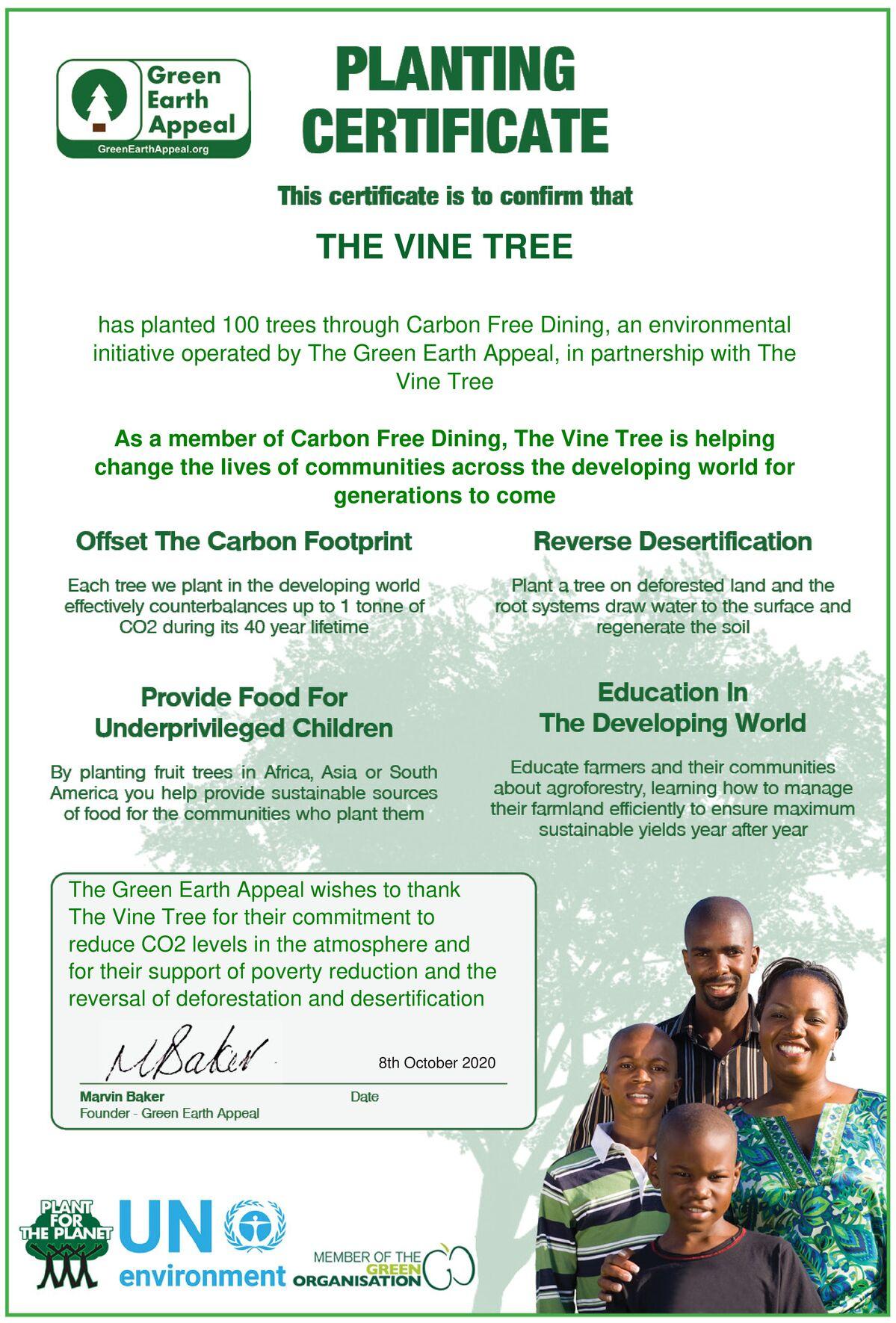 The Vine Tree