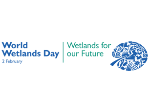 World Wetlands Day - Green Earth Appeal