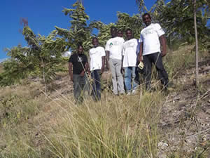 Green Earth Appeal - Haiti